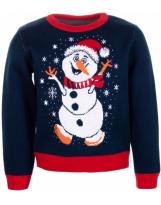 Свитер синий свитер Flash - Флеш 19BG134-6-3900-421